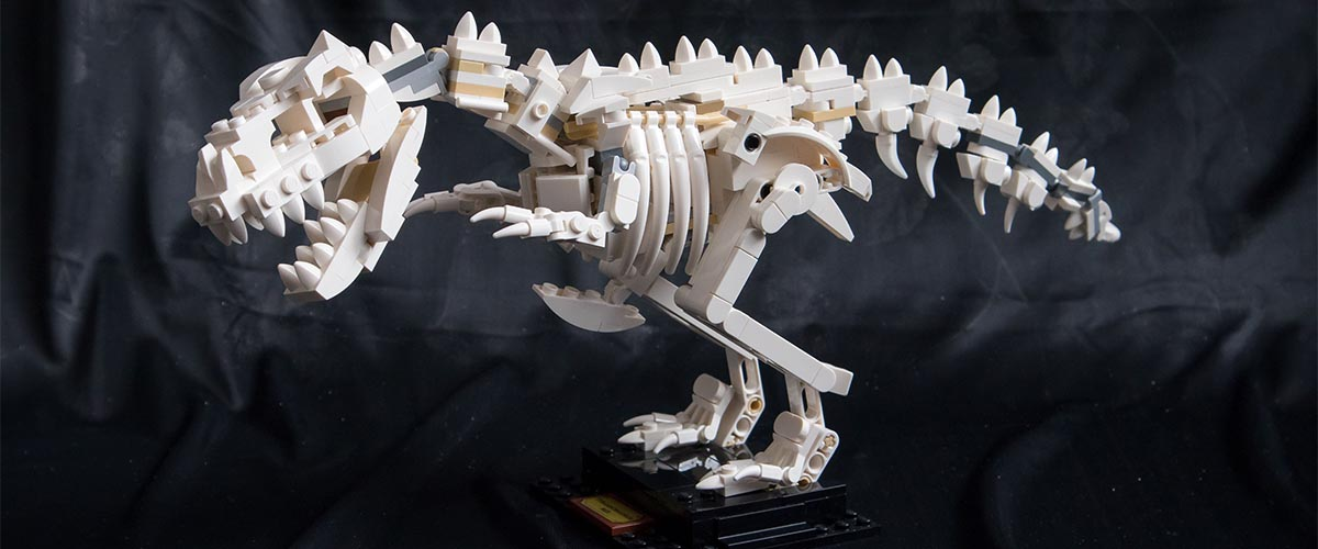 LEGO Ideas Trex - Bricks Easy